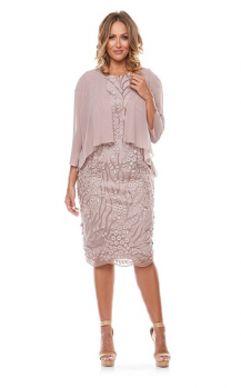 Layla Jones collection, Style Code LJ0105, Short mesh embroidered dress with chiffon jacket.